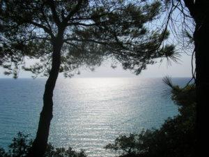 Další pohled z útesu na moře