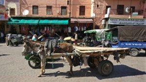 Motorka pro chudší